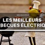 Meilleur Barbecue Électrique : Guide d'achat 2021
