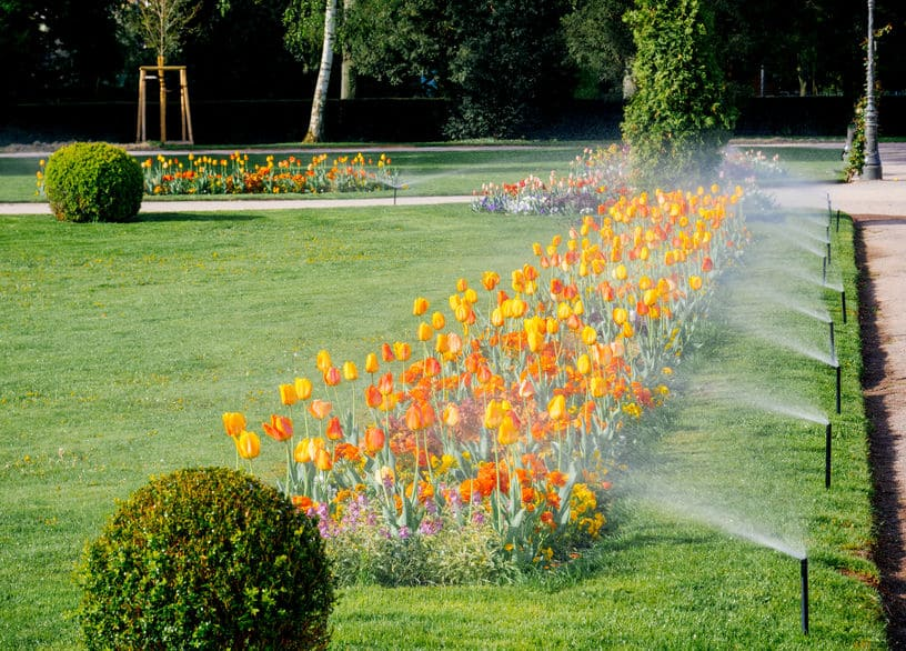 Arrosage automatique de jardin