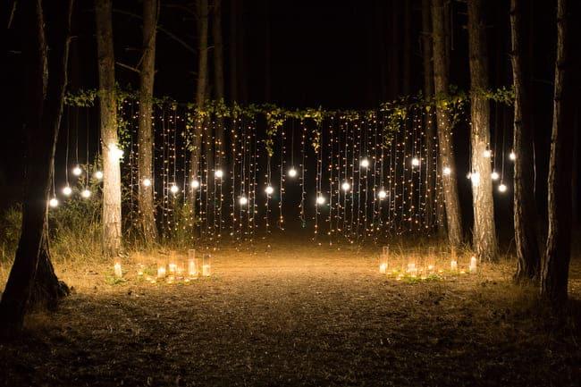 Une guirlande de lumière dans le jardin