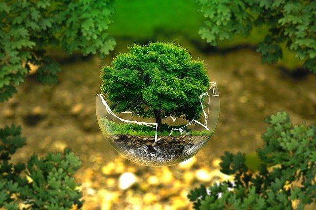 agriculture écologique