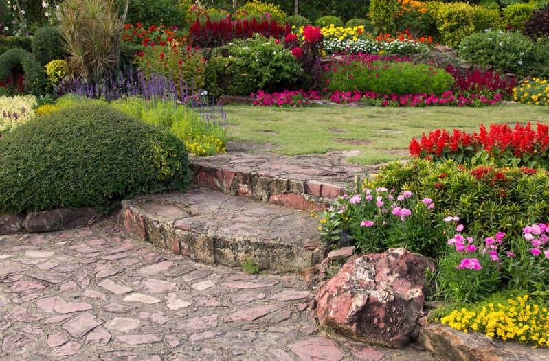 Fleurs dans un jardin zen