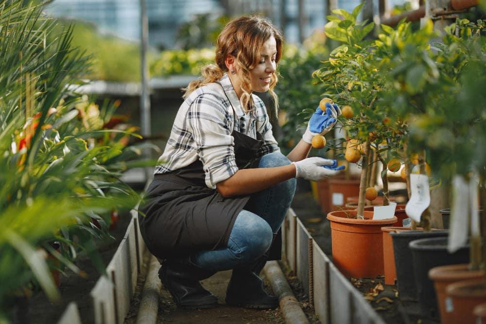 tablier de jardinier