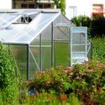 Serre de jardin : à quoi peut-elle servir ?