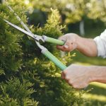 Le top 10 des cadeaux pour un jardinier