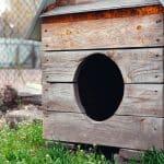 Comment construire une niche pour chien en palette?