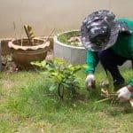 Comment jardiner pas cher ?