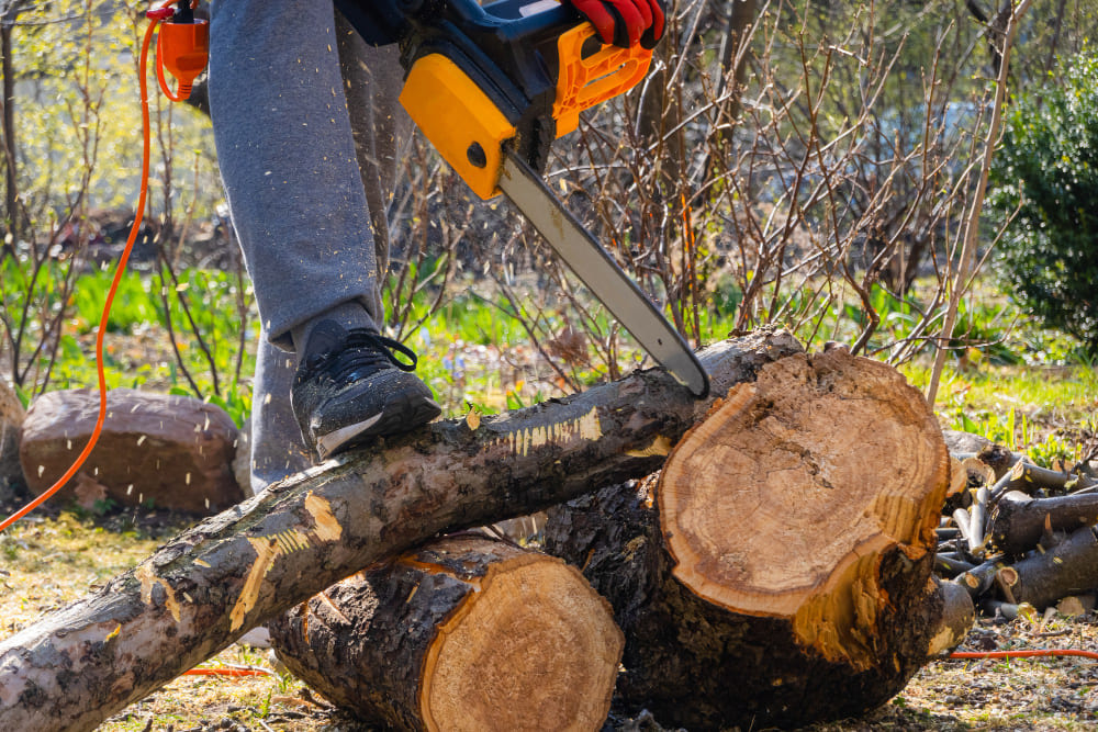 Couper du bois à la tronçonneuse