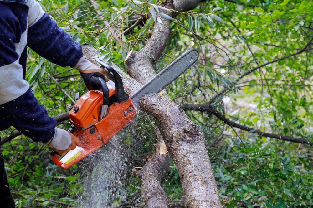 homme qui coupe du bois